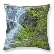 Upper Falls At Mine Kill State Park Throw Pillow