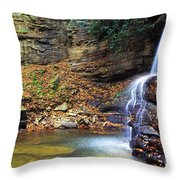 Upper Falls Holly River Throw Pillow
