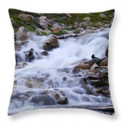 Upper French Creek 2 Throw Pillow