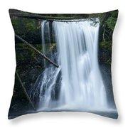 Upper North Falls Throw Pillow