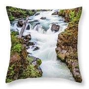 Upper Rogue River Throw Pillow