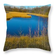 Upper Roxborough Reservoir Throw Pillow