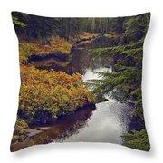 Upper Salamander Creek Throw Pillow