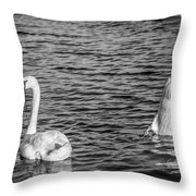Ups And Downs Throw Pillow