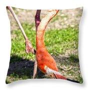Upside Down Flamingo Throw Pillow