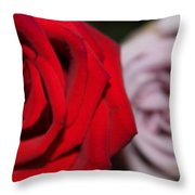 Upstaged Rose Throw Pillow