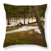 Upstream From The Basin Throw Pillow