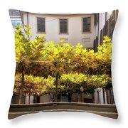 Urban Bower. Milan, Italy. Throw Pillow