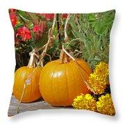 Urban Garden Throw Pillow