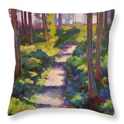 Urban Trail Climb Throw Pillow