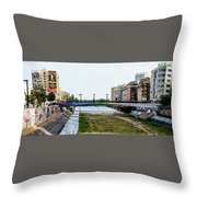 Urban Vividness Throw Pillow