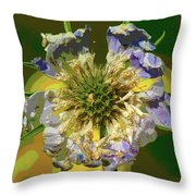 Urgent Colors Throw Pillow