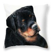 Urso Throw Pillow