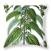 Urtica Dioica, Often Called Common Nettle Or Stinging Nettle Throw Pillow