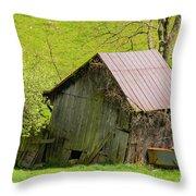 Used Virginia Barn Throw Pillow