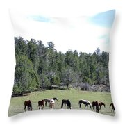 Utah 10 Throw Pillow