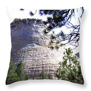 Utah 11 Throw Pillow