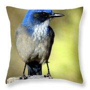 Utah Bird Throw Pillow