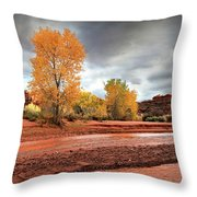 Utah Desert Wash Throw Pillow
