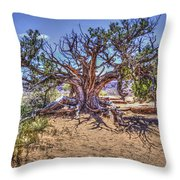 Utah Juniper On The Climb To Delicate Arch Arches National Park Throw Pillow