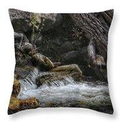 Utah Stream Throw Pillow