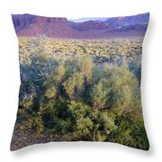 Utah Sunset Throw Pillow