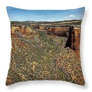 Ute Canyon Panorama Throw Pillow