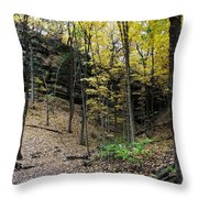 Utica Number 19 Throw Pillow