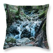 Uvas Canyon Waterfall I Throw Pillow