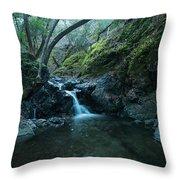 Uvas Canyon Waterfall II Throw Pillow