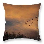 V Formation At Sunset  Throw Pillow