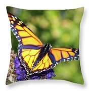 V Shaped Monarch  Throw Pillow
