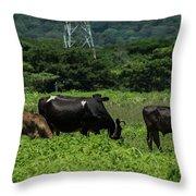 Vacas De Ahuachapan 2 Throw Pillow