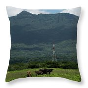 Vacas De Ahuachapan 4 Throw Pillow
