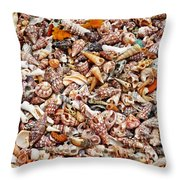 Vacation Nation Throw Pillow