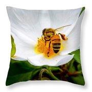 Vacaville Honey Bee Throw Pillow