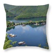 Vacha Dam Throw Pillow