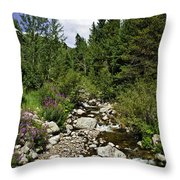Vail Stream In The Summer 2 Throw Pillow