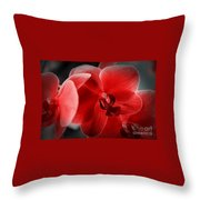 Valentine Orchid Throw Pillow