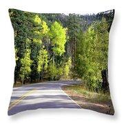 Vallecito Colorado Throw Pillow