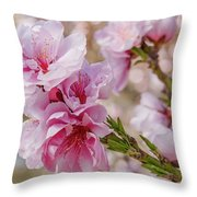 Valley Blossoms Throw Pillow