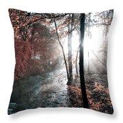 Valley Creek Sunrise Throw Pillow