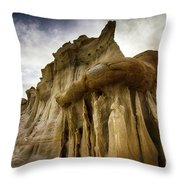 Valley Of Dreams 20 Throw Pillow