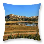 Valley Of Ghosts Throw Pillow