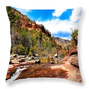 Valley Of Life Throw Pillow