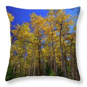 Valley Of The Five Lakes Trail Throw Pillow