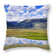 Valley Of The Serpent Throw Pillow