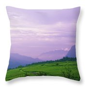 Valley Of Vineyards Throw Pillow