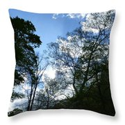 Valley Sky View Throw Pillow
