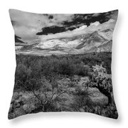 Valley View No.29 Throw Pillow